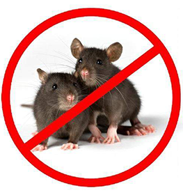 Control of Rodents